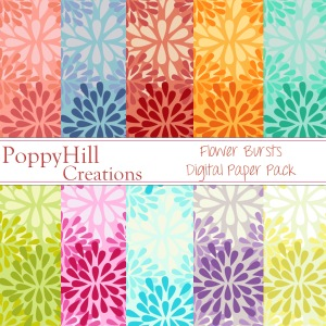 Flower Bursts Digital Paper Pack